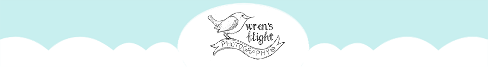 Wrens Flight Photography